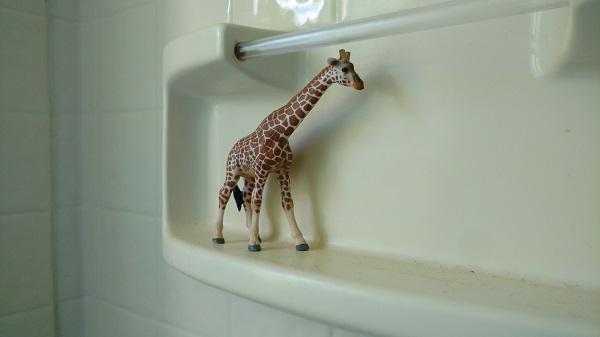 Shower_giraffe