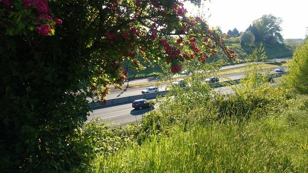 Highway_adjacent